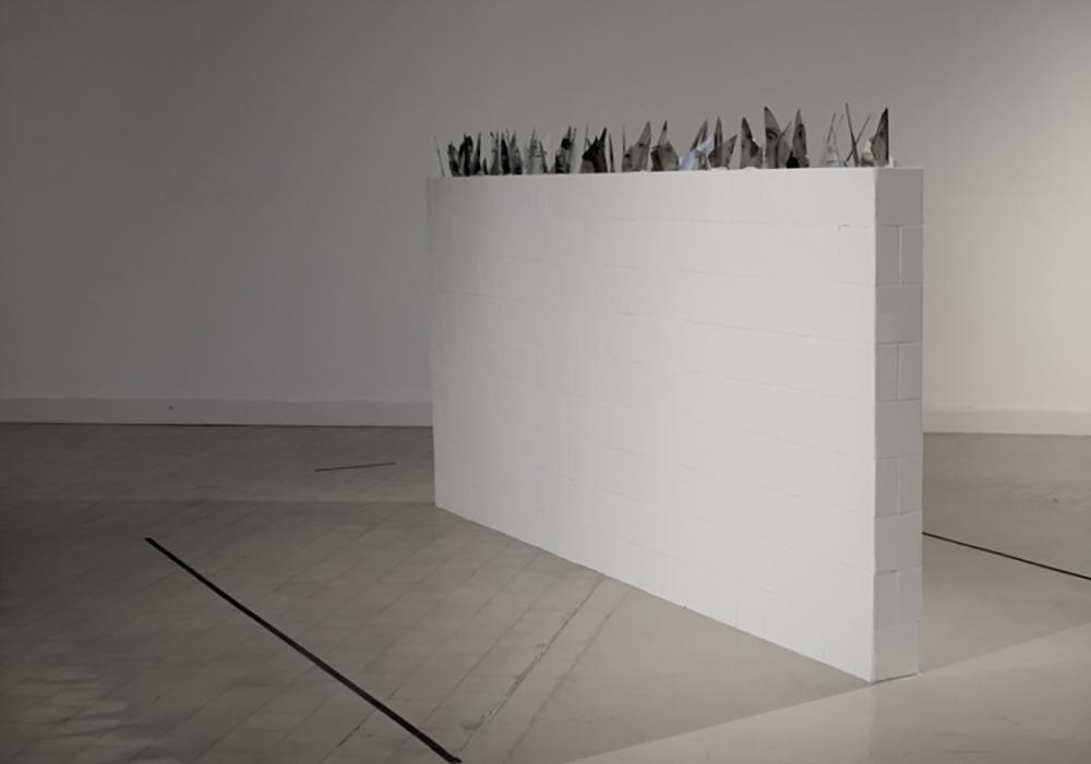 Carolina Magnin Instalaciones en vidrio y fotografía ofendículas
