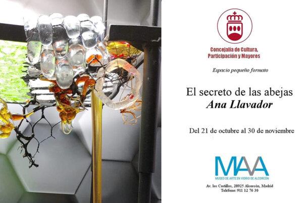 Expo de Ana Llavadors en el MAVA